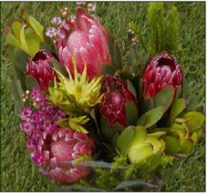 protea_bouquet resendiz Brothers
