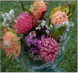 Pincushion bouquet resendiz Brothers