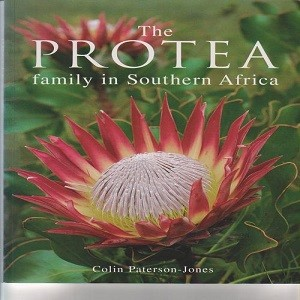 ths protea family in southern Africa 1