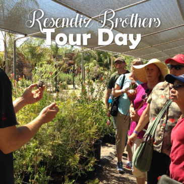 San Diego Gardener Group Tour