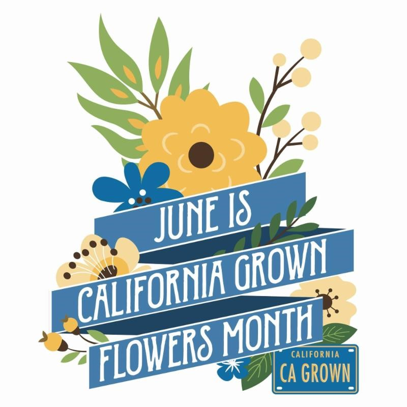 California Grown Flowers
