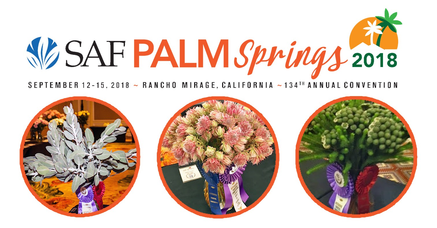 Saf Palm Springs 2018 134th Annual Convention Resendiz Brothers